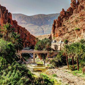 Arabisch in Algerien Dr Daniel Falk